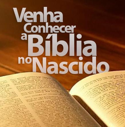 biblia-pagina